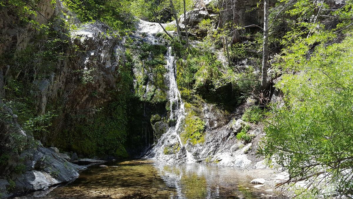 Jolie chute d'eau, rochers moussus, arbres