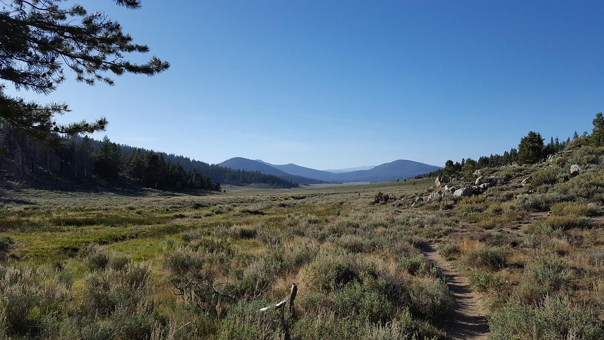 Plaine et montagnes à l'horizon - Vast plain and moutains in the background