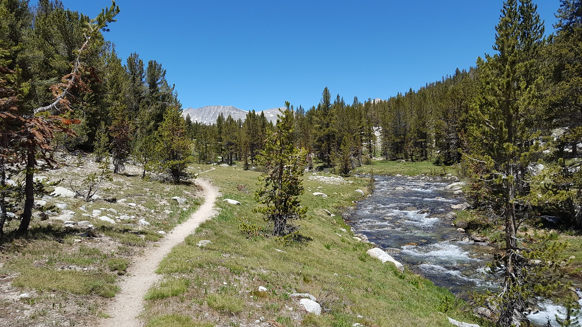 Torrent à droite, chemin à gauche, forêt de sapins et ciel bleu - Moutain stream to the right, trail to the left, fir trees and blue sky