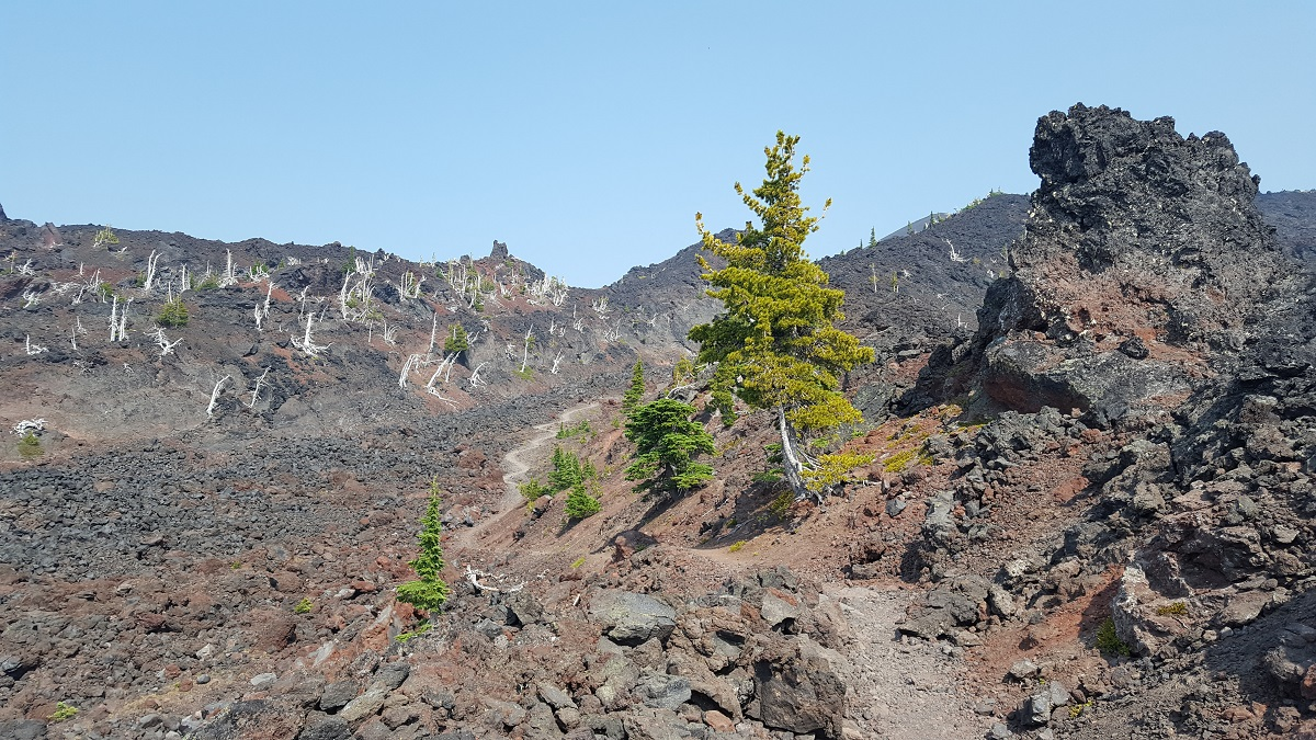 Paysage volcanique - Volcanic landscape