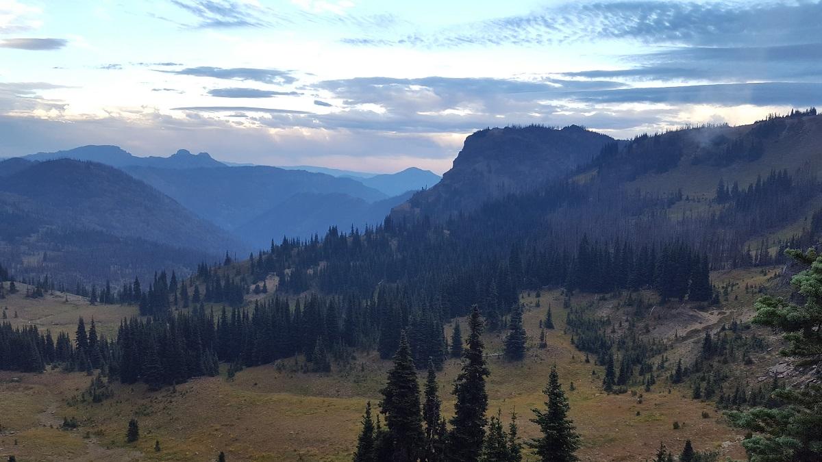 Paysage de montagne et forêt avec un peu de brume - Mountain and forest landscape, somewhat foggy